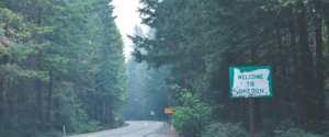 Read more about the article Wildfire Resources: Supporting Children and Families